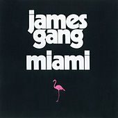 Play & Download Miami by James Gang | Napster