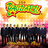 Play & Download El Patrón Ya Llegó by Los Yaguaru de Angel Venegas | Napster
