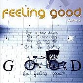 Feeling Good, Vol. 2 (Positive Chill Grooves) by Various Artists