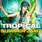 Play & Download Tropical Summer Jamz by Various Artists | Napster