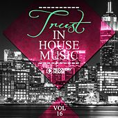 Play & Download Trust in House Music, Vol. 16 by Various Artists | Napster