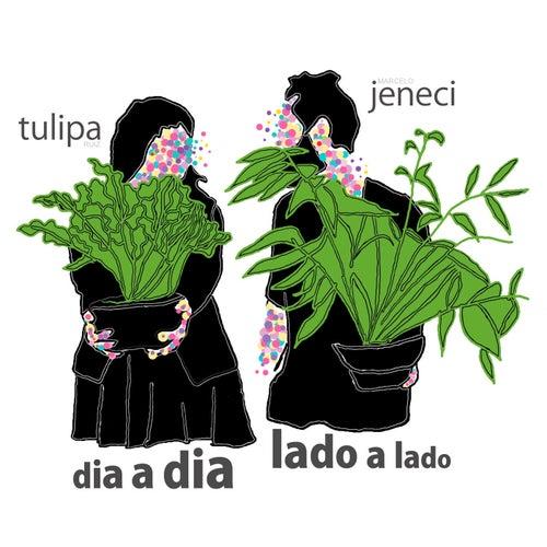Play & Download Dia a Dia, Lado a Lado by Tulipa Ruiz e Marcelo Jeneci | Napster