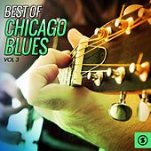 Best of Chicago Blues, Vol. 3 by Various Artists