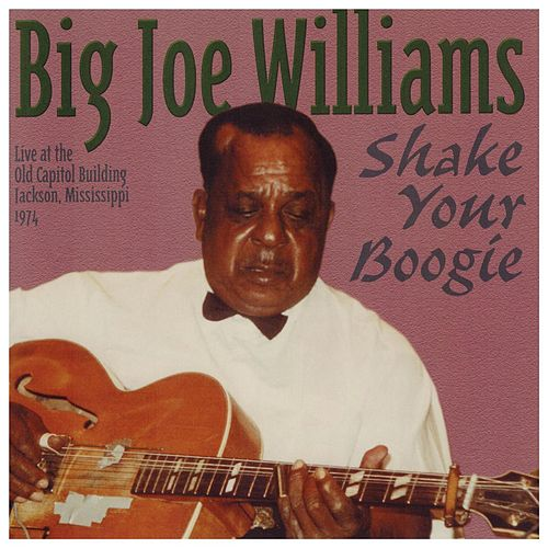 Play & Download Shake Your Boogie by Big Joe Williams | Napster