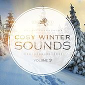 Cosy Winter Sounds, Vol. 3 by Various Artists