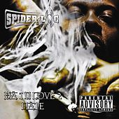 The One You Love To Hate by Spider Loc