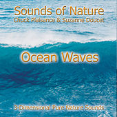 Ocean Waves by Suzanne Doucet & Chuck Plaisance