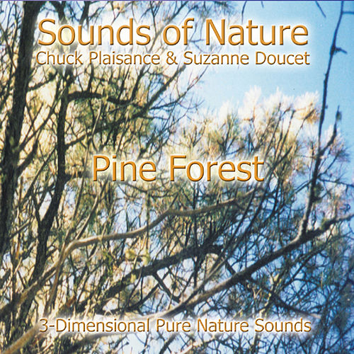 Play & Download Pine Forest by Suzanne Doucet & Chuck Plaisance | Napster