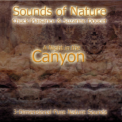 Play & Download A Night In The Canyon by Suzanne Doucet & Chuck Plaisance | Napster