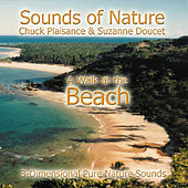 Walk At The Beach by Suzanne Doucet & Chuck Plaisance