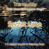 Secret Lake by Suzanne Doucet & Chuck Plaisance