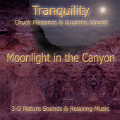 Moonlight In The Canyon by Suzanne Doucet & Chuck Plaisance