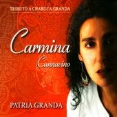 Play & Download Patria Granda by Carmina Cannavino | Napster