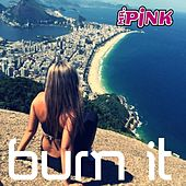 Burn-It (Radio Edit) by Mr Pink
