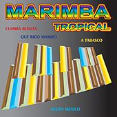 Marimba Tropical by Various Artists