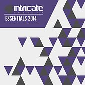 Play & Download Essentials 2014 by Various Artists | Napster