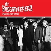 Play & Download Déjeuner sur l'herbe by Les Breastfeeders | Napster