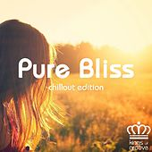 Play & Download Pure Bliss Chillout Edition by Various Artists | Napster