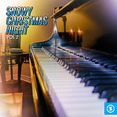 Snowy Christmas Night, Vol. 2 by Various Artists