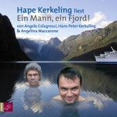 Ein Mann, ein Fjord by Hape Kerkeling