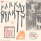 Play & Download Tally All the Things That You Broke by Parquet Courts | Napster