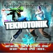 Electro Teknotonik Vol 2 by Various Artists