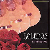 Play & Download Boleros en la Noche by Various Artists | Napster