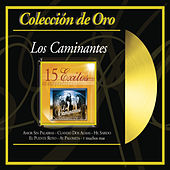 Play & Download Coleccion de Oro by Los Caminantes | Napster