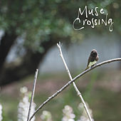 Crossed Lines by Muse Crossing