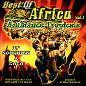 Ambiance tropicale - Soukouss a gogo, Vol. 1 by Various Artists