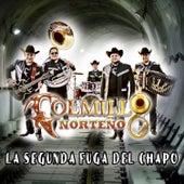 Play & Download La Segunda Fuga del Chapo by Colmillo Norteno | Napster