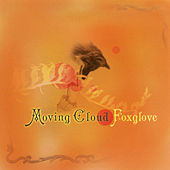 Play & Download Foxglove by Moving Cloud | Napster