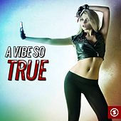 A Vibe so True by Various Artists