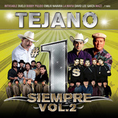 Tejano #1´s Siempre by Various Artists