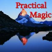 Practical Magic von Various Artists