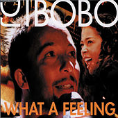 Play & Download What a Feeling by DJ Bobo | Napster