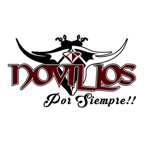 Play & Download Novillos por Siempre by Novillos Musical | Napster