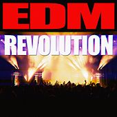 Play & Download EDM Revolution by Various Artists | Napster