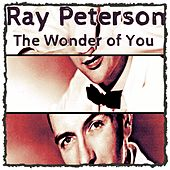 The Wonder of You by Ray Peterson