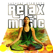 Play & Download Relax Music - Natural Elements - Forest by Relax Music | Napster