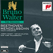 Play & Download Beethoven, Mendelssohn: Violin Concertos by New York Philharmonic | Napster