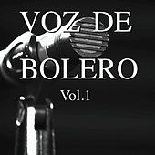 Play & Download Voz de Bolero Vol. 1 by Various Artists | Napster