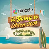 Play & Download Intricate Records Is Going to Ibiza 2014 by Various Artists | Napster