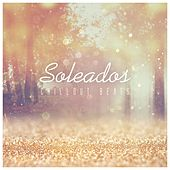 Soleados Chillout Beats by Various Artists