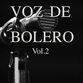 Voz de Bolero Vol. 2 by Various Artists
