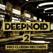 Deepnoid, Vol. 2 von Various Artists