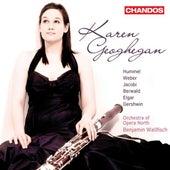 Play & Download Bassoon Recital: Geoghegan, Karen - HUMMEL, J. / WEBER, C. / BERWALD, F. / JACOBI, C. / ELGAR, E. / GERSHWIN, G. by Karen Geoghegan | Napster