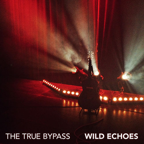 Play & Download Wild Echoes by True Bypass | Napster