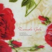 Play & Download Zarzuela Gala by Bratislava Symphony Orchestra | Napster
