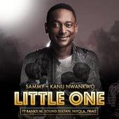 Play & Download Little One (feat. Banky W, Sound Sultan, Niyola & Praiz) by Sammy | Napster